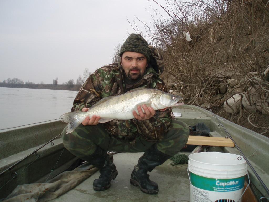 luccio-perca-kg-4.2-febbr.2011.jpg