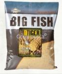 DYNAMITE BIG FISH SWEET TIGER
